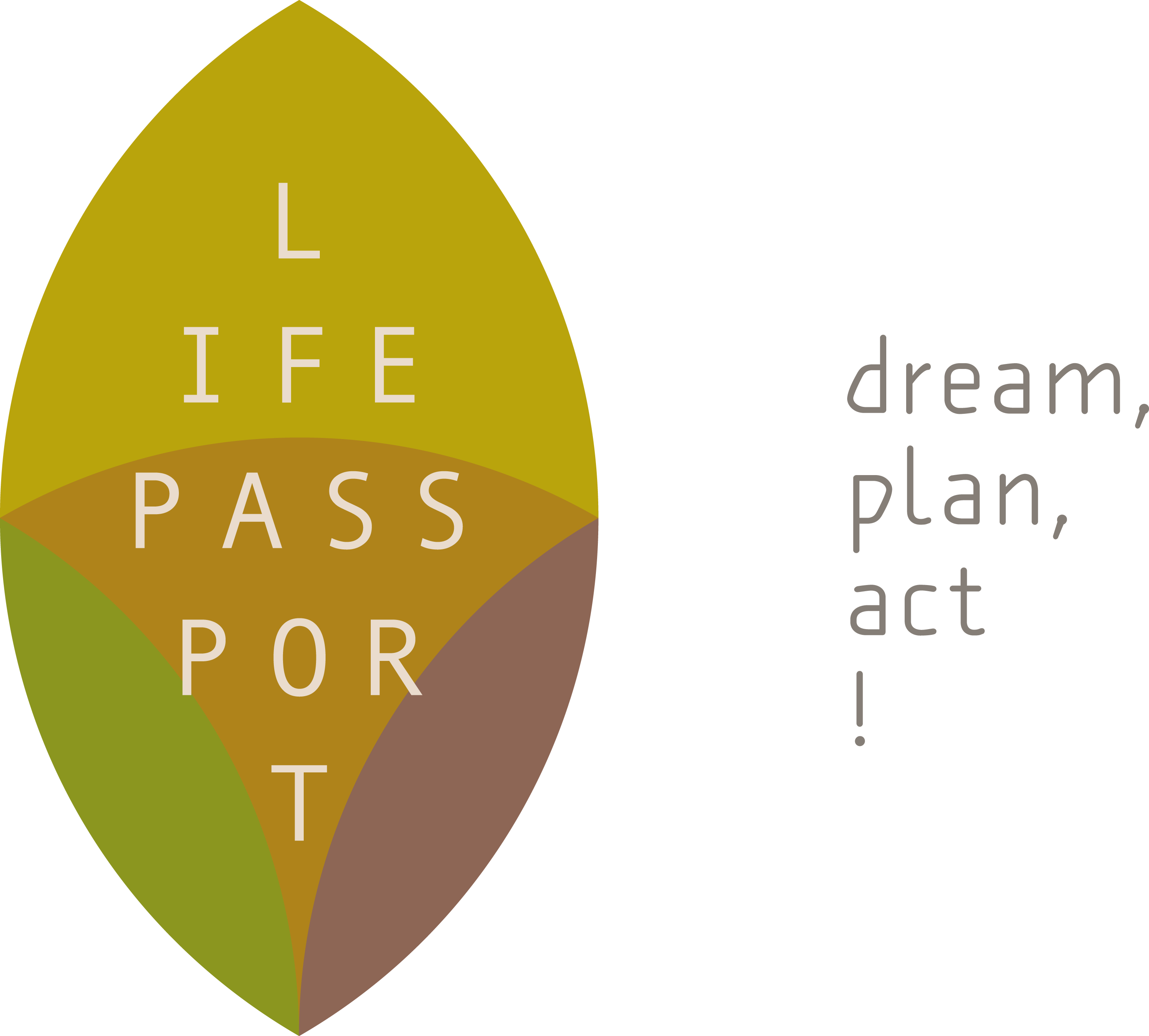 Lifepassport